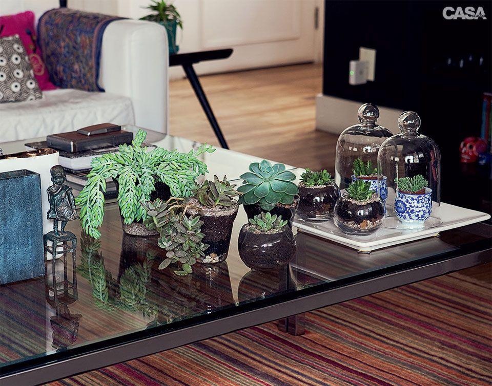 Plantas que se desenvolvem bem em reas cobertas lebre - Mesas de centro que se elevan ...