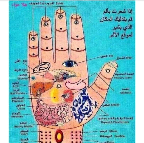 Home Massage Therapy | Acupressure, Acupressure points ...