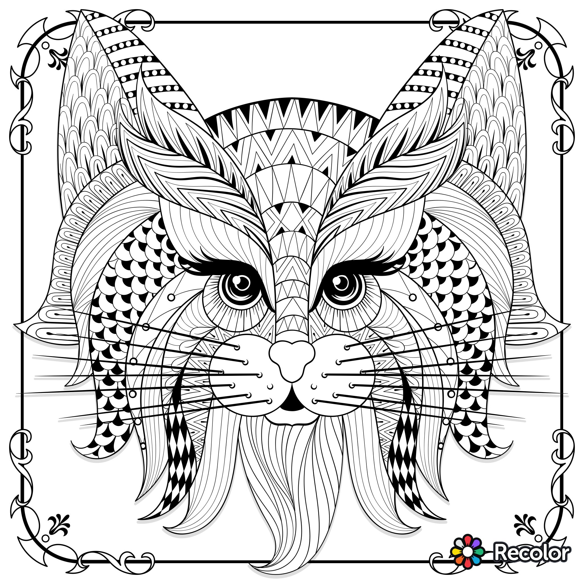 Cute Cat Zentangle To Colour Coloring