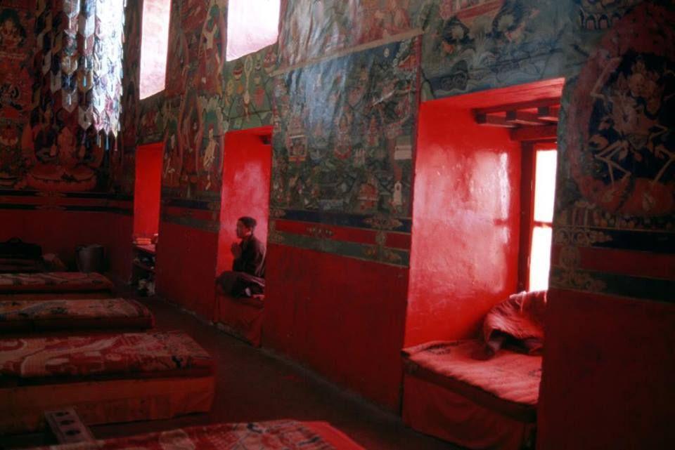 monk in prayer Steve mccurry, Monk meditation, Tibet