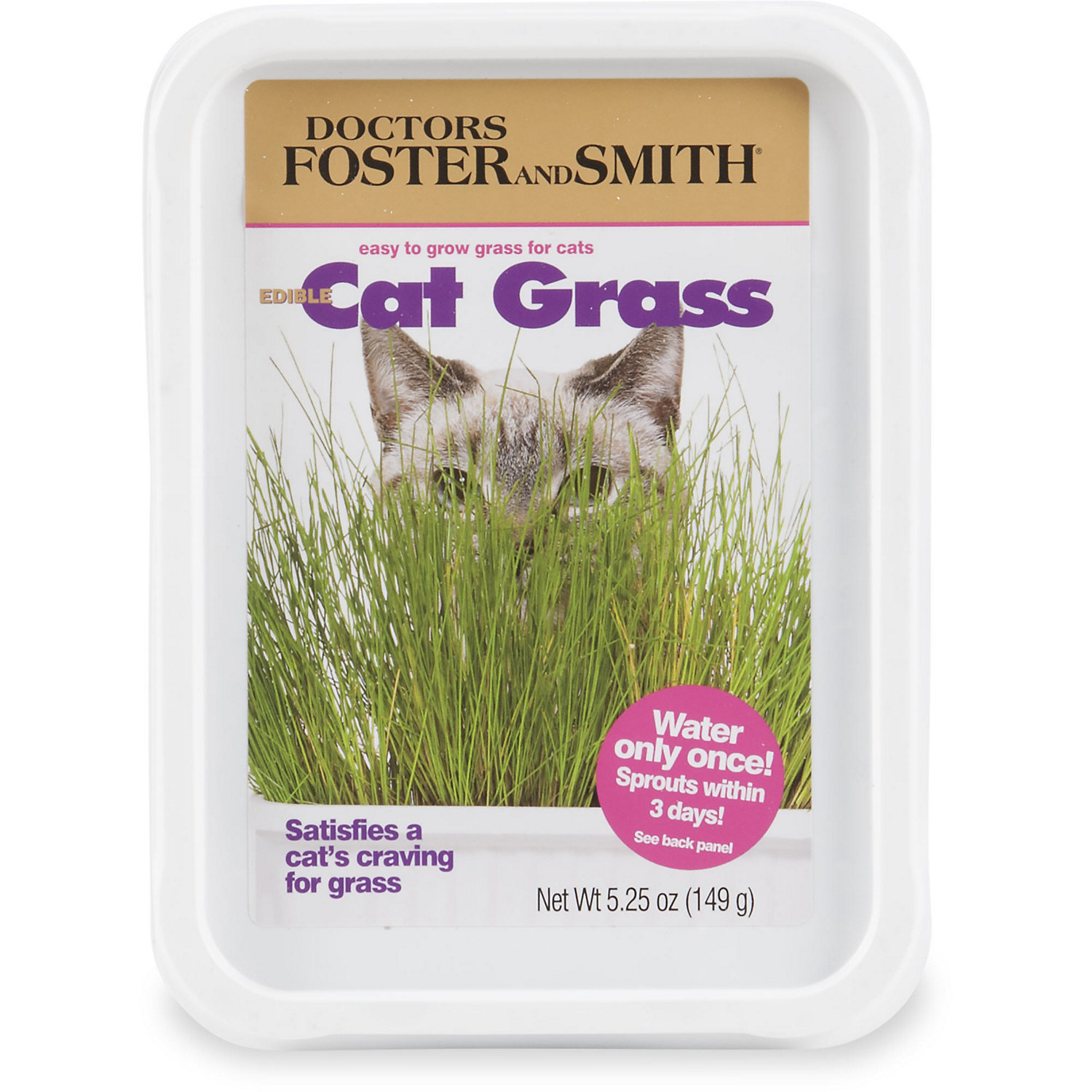 Drs Foster And Smith Edible Cat Grass Cat Grass Foster And Smith Food Animals