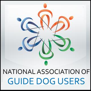 Nagdu Guide Service Dog Advocacy Information Scholarships School Info Service Dogs