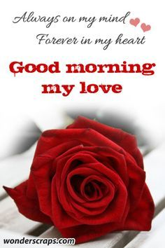 good morning google search love quotes pinterest good