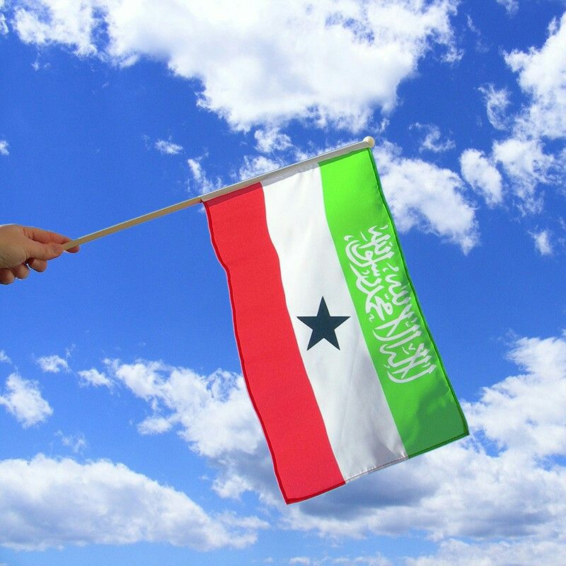 Somaliland Flag Wind Sock Flag Outdoor Decor