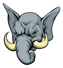 象怖い の画像検索結果 象 怖い