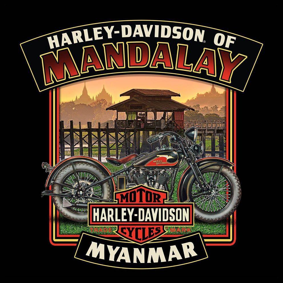 Pin by Alcatraz666 on HARLEY DAVIDSON in 2020 Harley