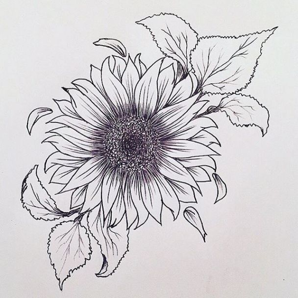Photo of Ten Reasons Why You Shouldn't Go To Sunflower Tattoo Drawing On Your Own | sunflower tattoo d…