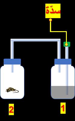 مكونات الهواء الأكسجين ثاني أكسيد الكربون بخار الماء آزوت نيتروجين هيدروجين ايقاظ علمي سنة سادسة علوم سنة سادسة سنة سادسة ابتدائي Symbols Letters