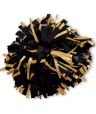 In Stock Wetlook With Holographic Flash Cheerleading Pom Poms Cheerleading Pom Poms Pom Pom Gold Pom Poms