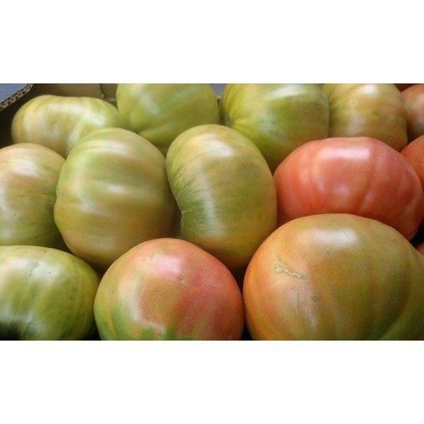 Comprar Tomate Rosa Del Somontano De Barbastro Peraltilla Demipueblo Es Tomate Pueblos De España Hortaliza