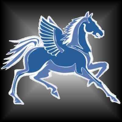 pegasus   Pegasus Windows Inc.