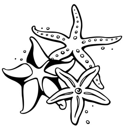 these stunning starfish tattoos are sure to dazzle you. Black Bedroom Furniture Sets. Home Design Ideas