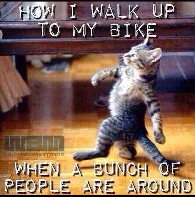 """""""Asi camino a mi moto cuando hay gente ap rededor"""" ✌️ #SabaditoAlegre #BikePride #BikerAttitude #DisturbedCulture #DisturbedTendencies"""