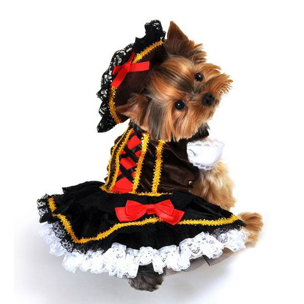 explore halloween costumes for dogs and more - Halloween Costume For Small Dogs