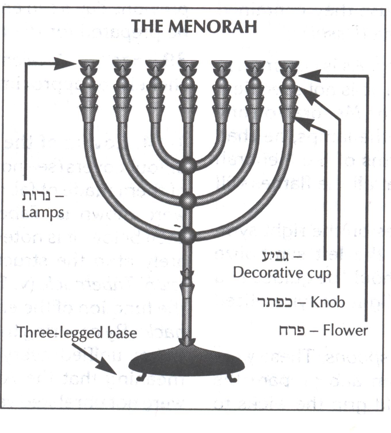menorah lighting diagram auto electrical wiring diagram u2022 rh focusnews co Menorah Candles Menorah Candles