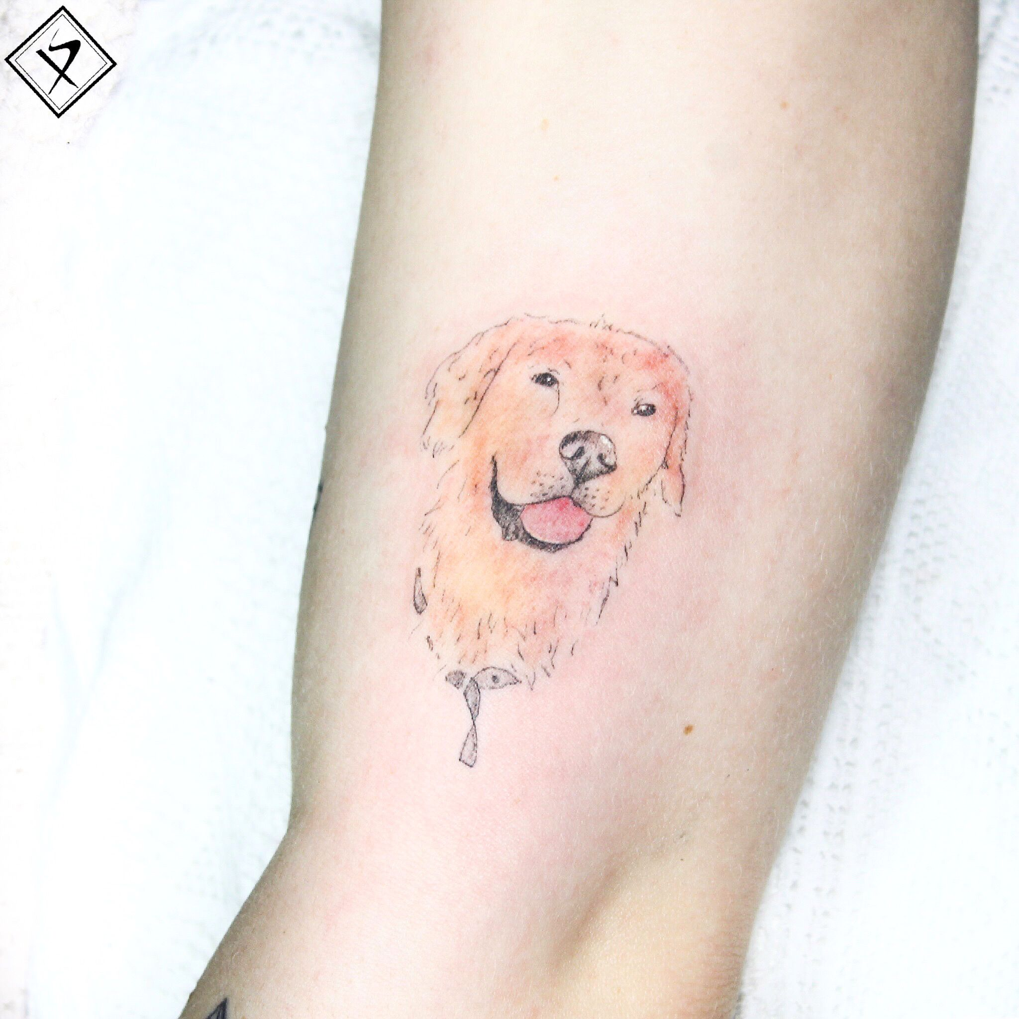 #tattooartist #xbariskaya #smalltattoo #linetattoo #tiny #tattooidea #animaltattoo #dogtattoo #goldenretrievertattoo #look