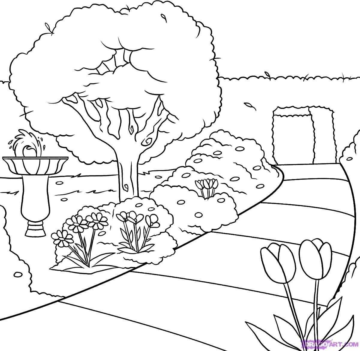 How To Draw A Garden Step 6