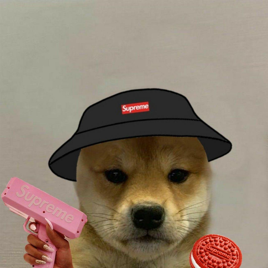 Perro Dog In 2020 Dog Club Dog Icon Dog Hat