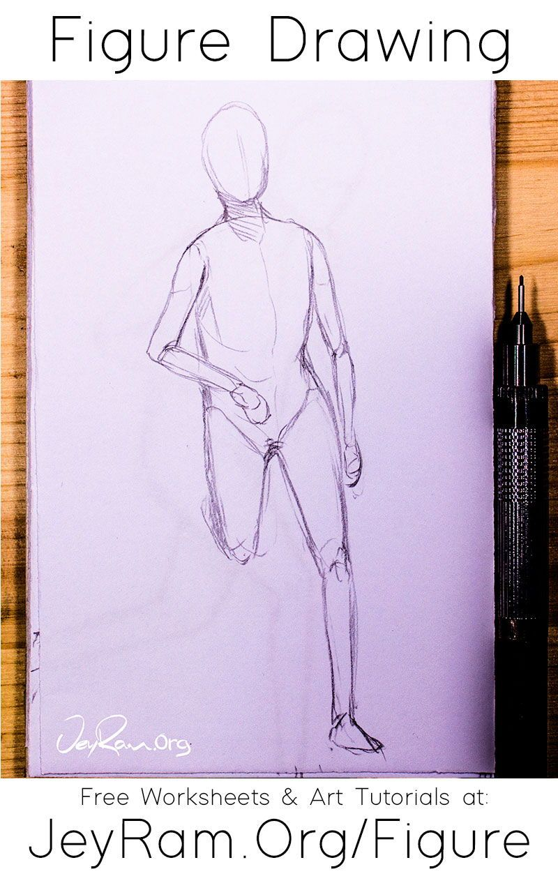 Pin On Anatomy Tutorials How To Draw The Human Figure