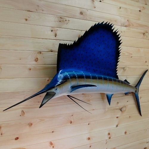Blue Marlin Fish House Fish House House Blue Marlin Fish