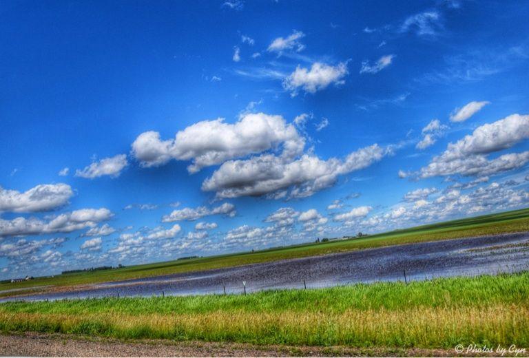 Hwy 23...Farmland after all the rain...photo by Cyn...June 15' 2014