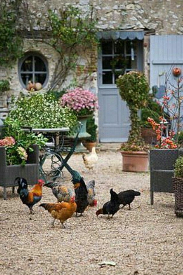 Country cottage cottages pinterest garten hof und - Hof und gartentore ...