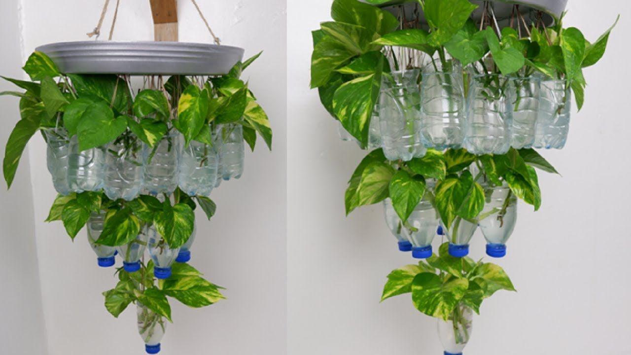 1cd80cdaaaec01890ab4be2b9b63a6d1 - Diy Plastic Bottles Hanging Flower Gardens