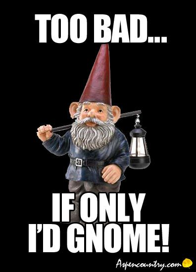 1cd86e5a52064f1dca7c2f9ec10cf272 sorry gnome humor too bad if only i'd gnome? funny