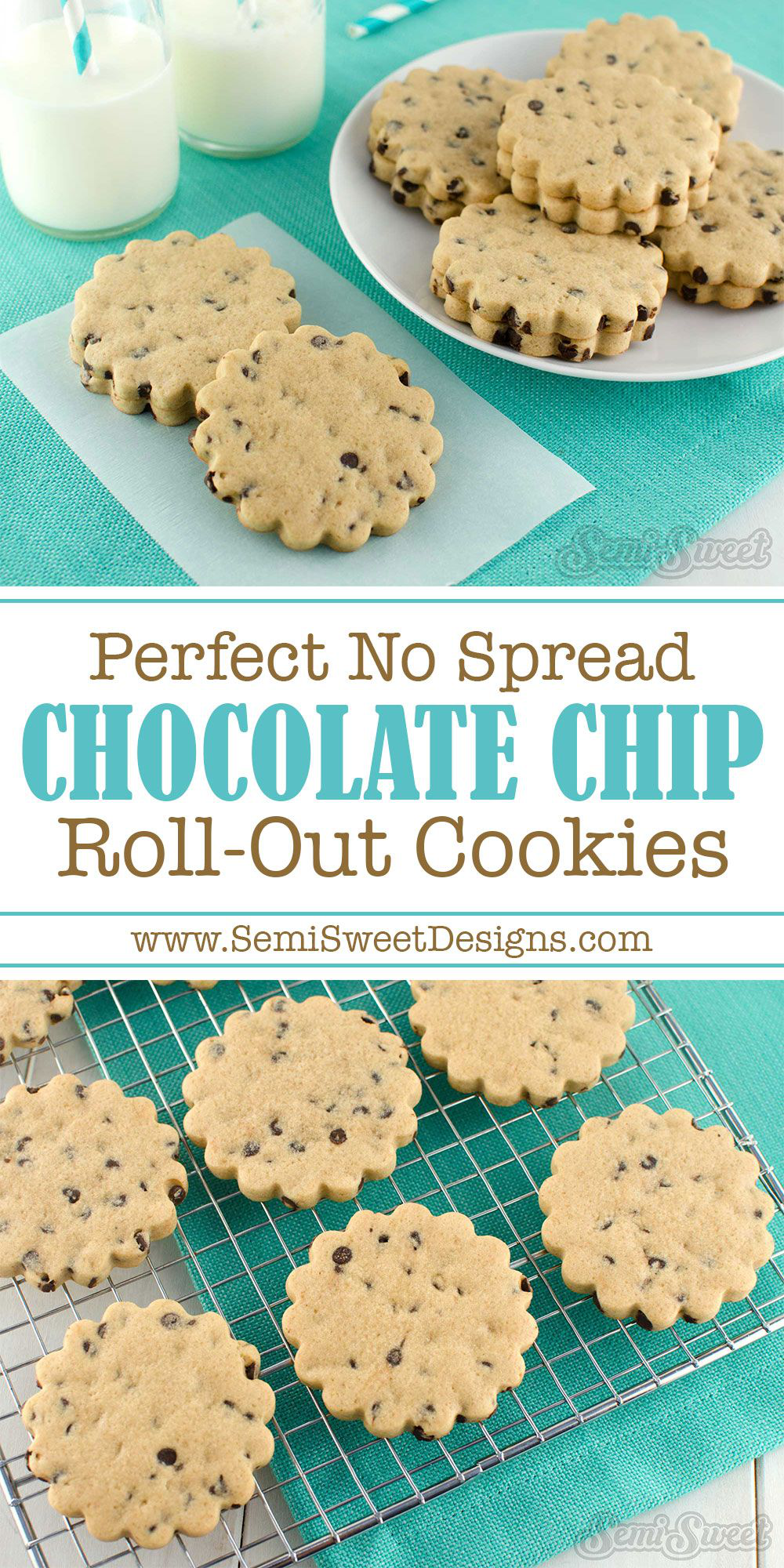 Perfect No Spread Chocolate Chip Cookie Roll Out Recipe For Cutout