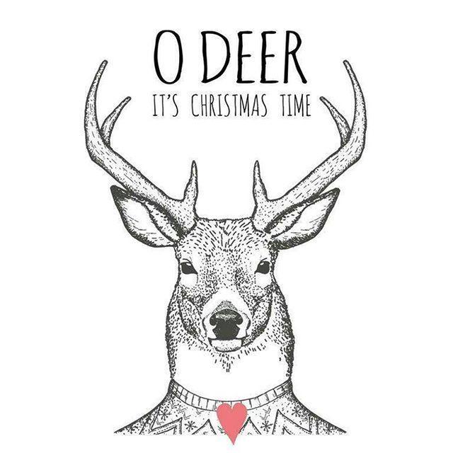 o deer its christmas time holidays christmas christmas