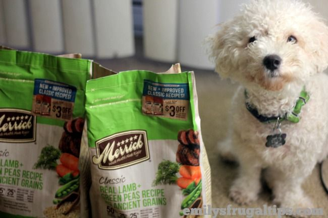 Merrick Classic Dog Food Review A Chance To Win 1 Of 50 Bags Of
