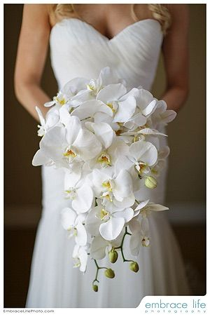Wedding Bouquet By Butterfly Flora And Event Design White Bridal