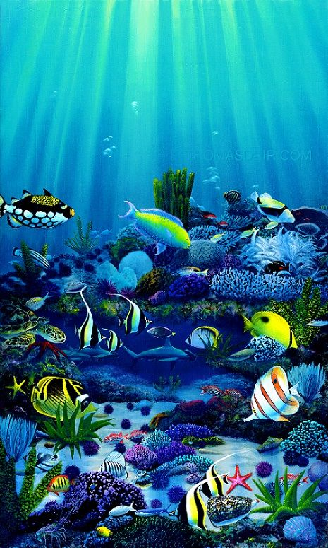 Hawaii wall art tropical fish paintings living reef for Tropic fish hawaii