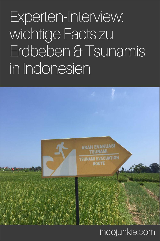 Erdbeben Indonesien Fast Facts Uber Tsunamis Erdbeben Und Seebeben Indonesien Reise Inspiration Und Indonesien Rundreise