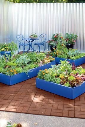 Plastic Raised Garden Beds Periwinkle Grow Bed Raised Beds Garden Beds Raised Garden Beds Raised Beds