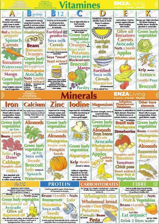 Vitamins Minerals Chart