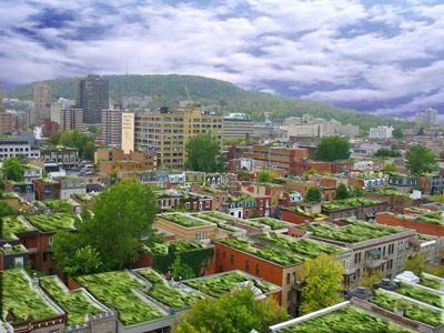 Jardin potagers toits des immeubles canada urban garden pinterest - Immeuble vegetal ...