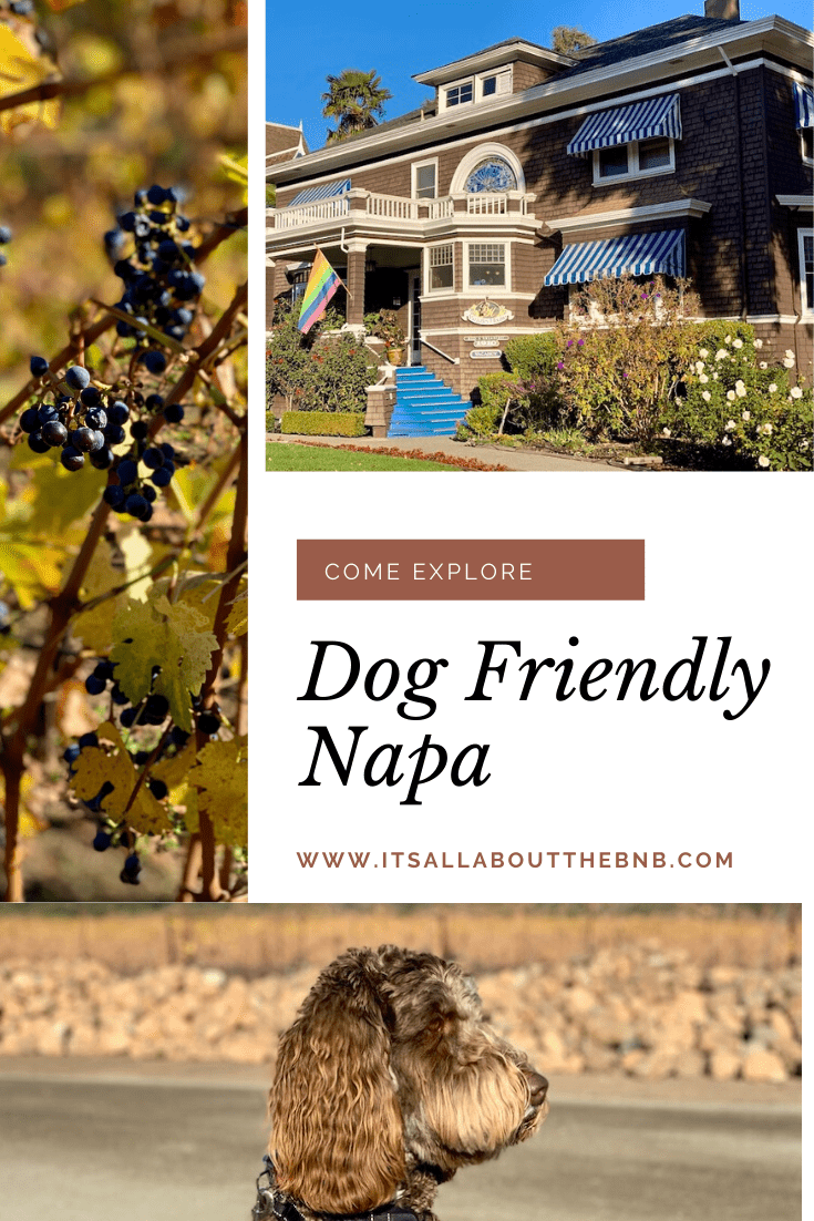 Dog Friendly Lodging In Napa Beazley House Bed And Breakfast In 2020 Dog Friends Cool Places To Visit California Travel Destinations