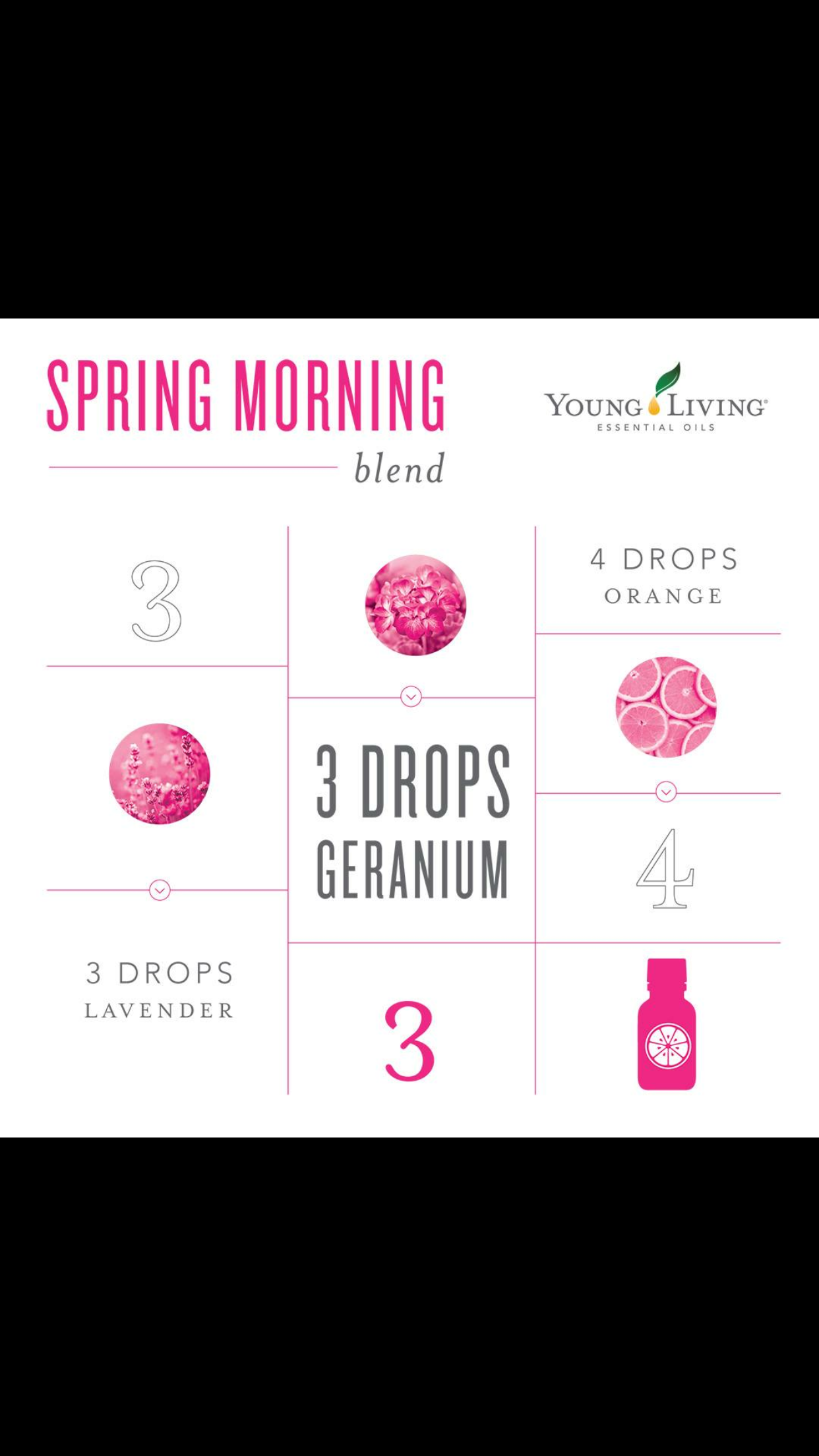 Spring Morning Blend