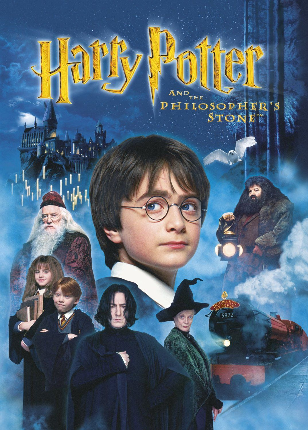 Harry Potter And The Philosopher S Stone Dvd 2001 Amazon Co Uk Daniel Radcliffe John Hurt Warwick Da Harry Potter Dvd Harry Potter Movies Harry Potter Film