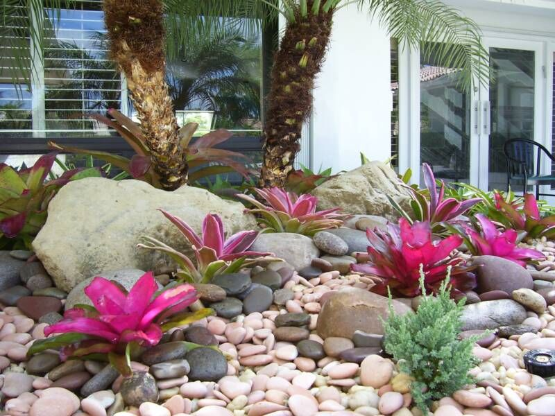 Easy Rock Garden Ideas view in gallery Easy Rock Garden No Plants Amazing Fuchsia Colored Bromeliads In