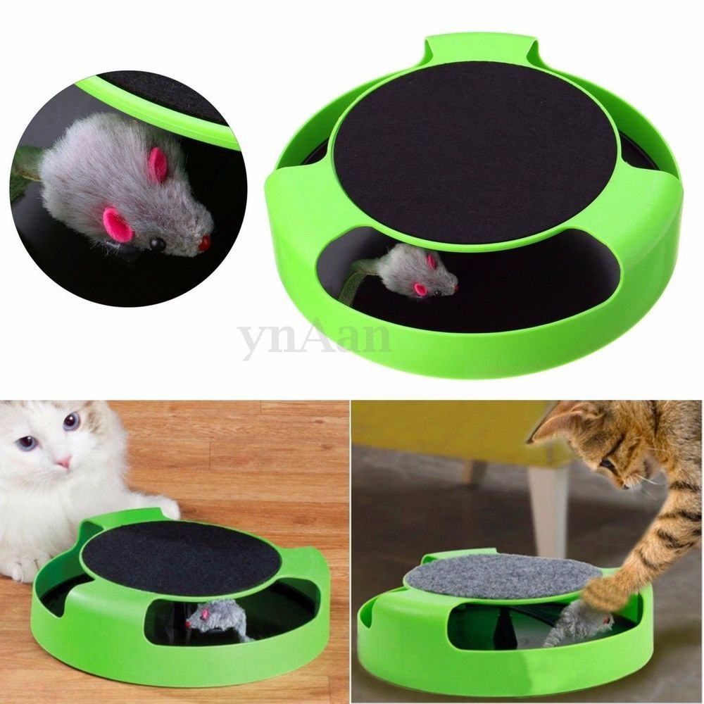 Cat Kitten Catch The Mouse Plush Moving Toy Scratching