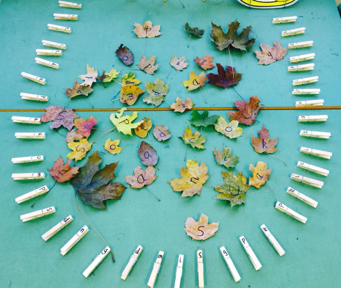 Phonics Match Match Sounds On Leaves To Pegs By Pegging Them On Inspired By Tishylishy Pin