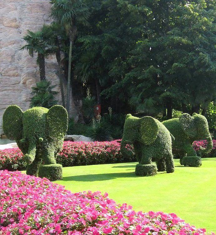 Elephant Topiary   Hedge Mazes   Pinterest   Topiary, Beautiful ...