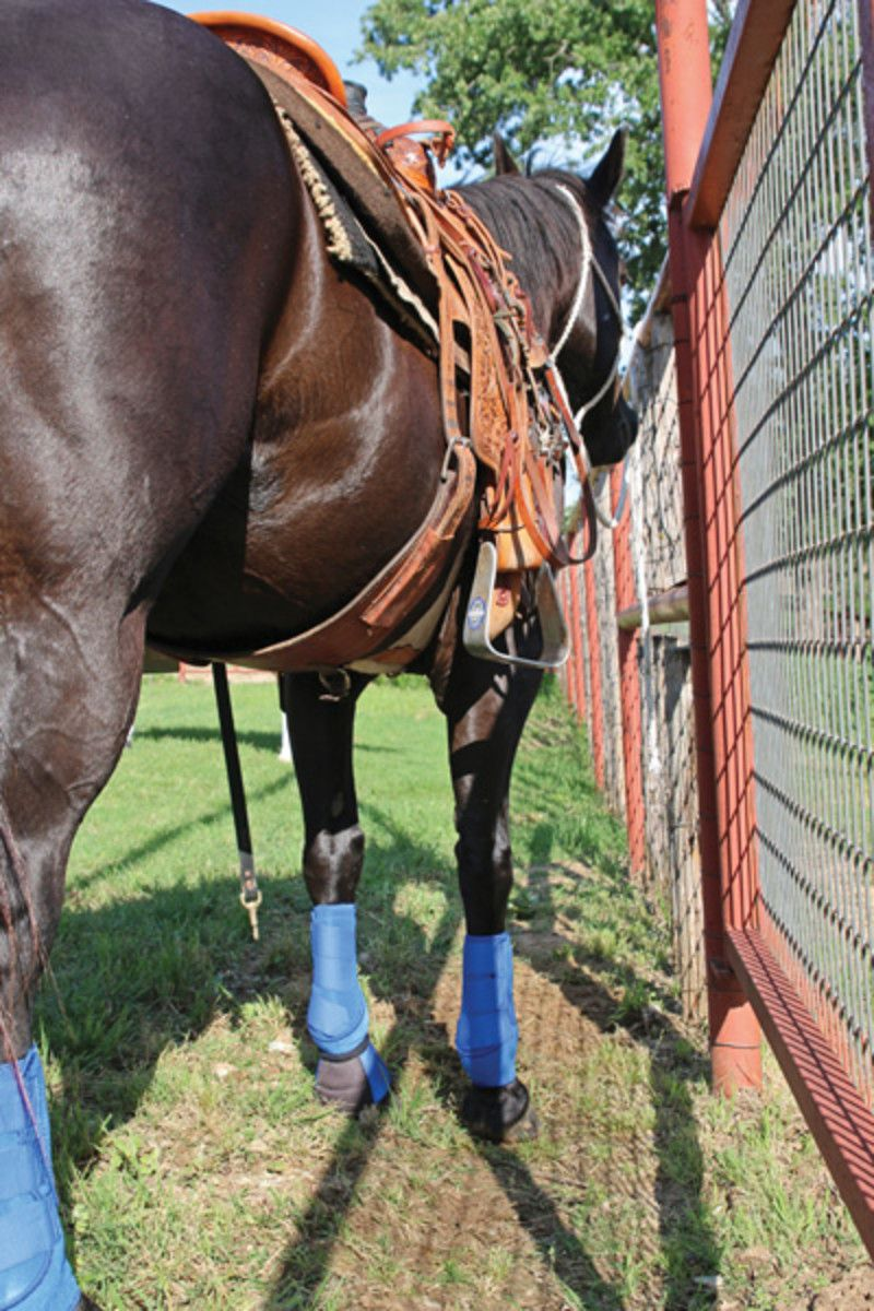 Team Ropers' Spring Veterinary Checklist (With images ...