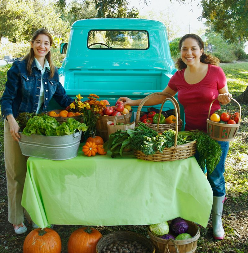 6 Legal Tips For Starting Your Farm Business (With images