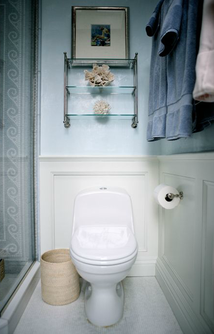 Ivory And Blue Bathroom Features Above The Toilet Glass