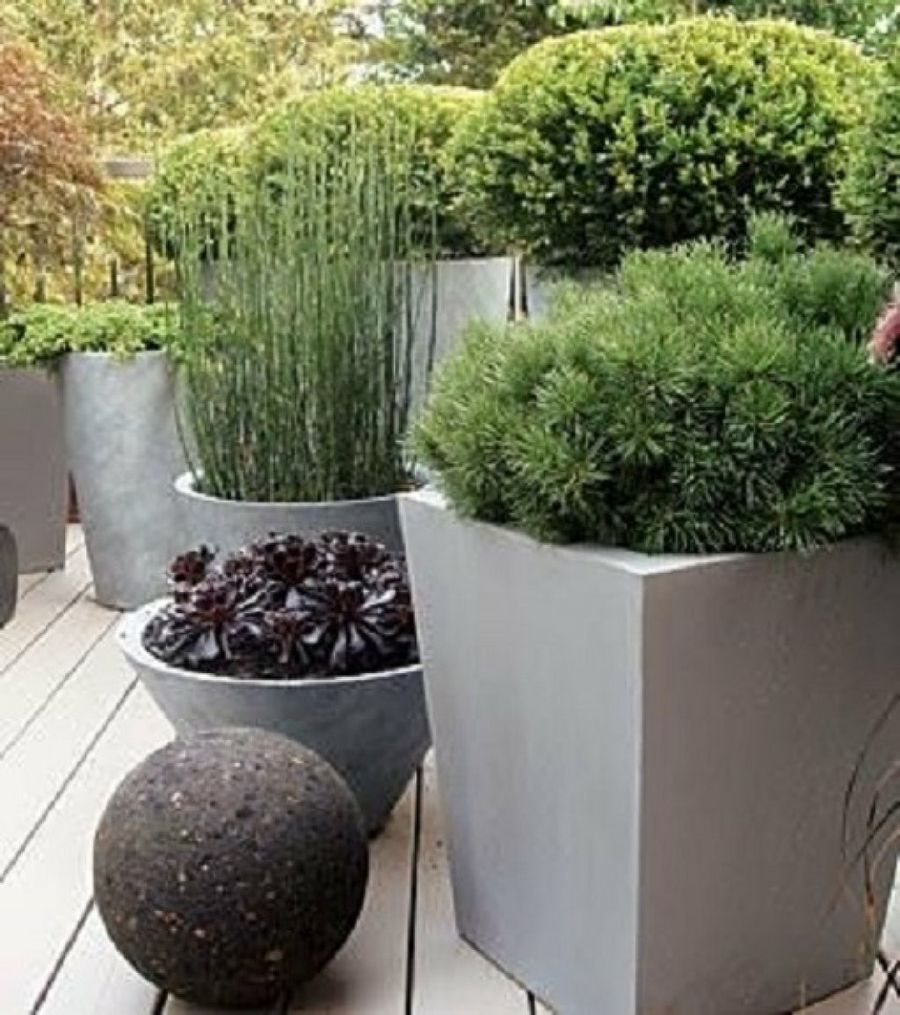 Recopilaci n de maceteros para ambientes modernos y - Macetas para patios ...