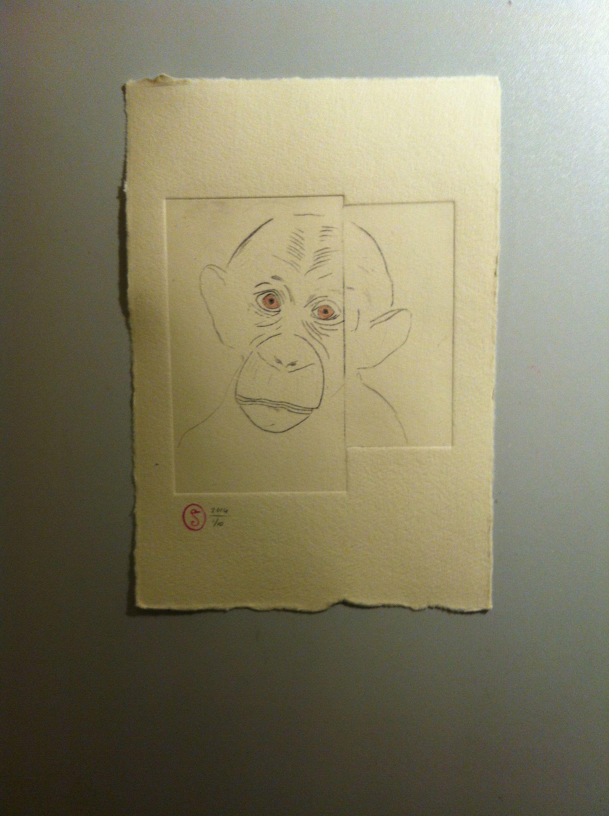 Monkey - etching