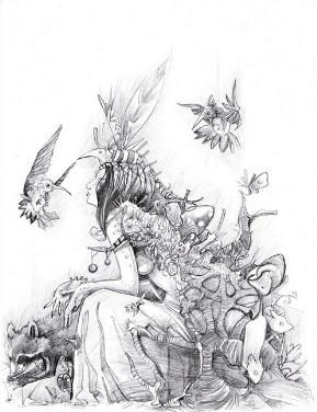Fairy Drawings In Pencil drawings of fairies - pen and ...